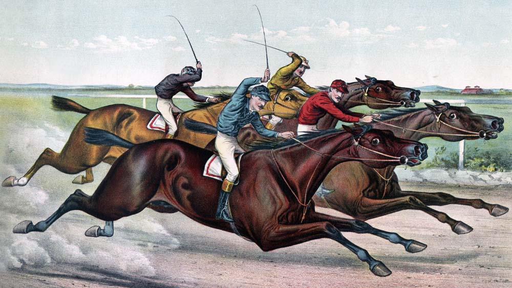 Horse betting terms naperville inter vs sassuolo betting expert nba